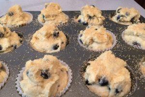 Blueberry Muffin Batter