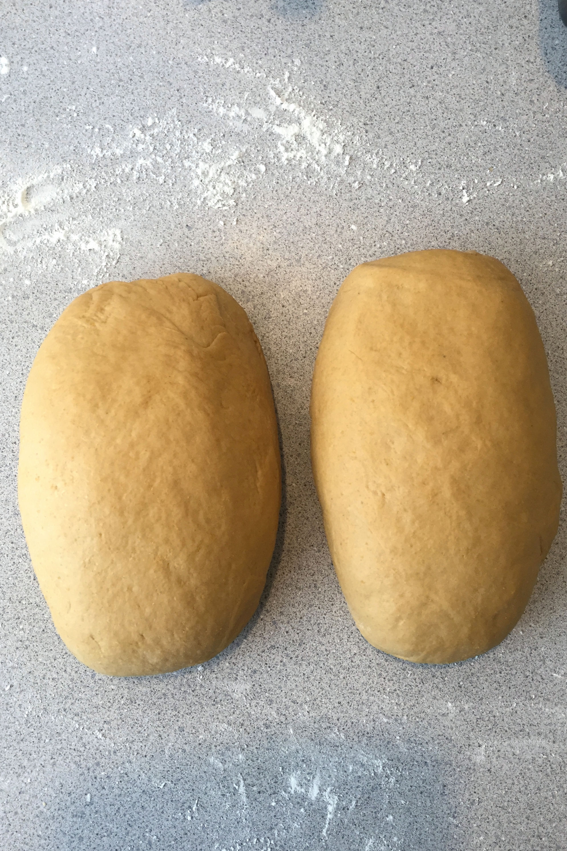 Anadama Bread dough